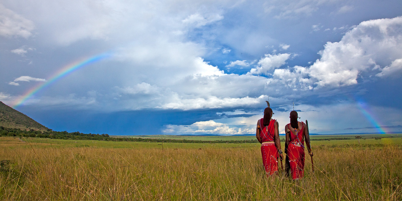 African Safari Gallery